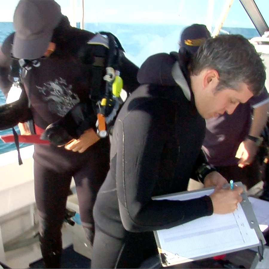 Sunshine Coast Marine Biodiversity Assessment Video