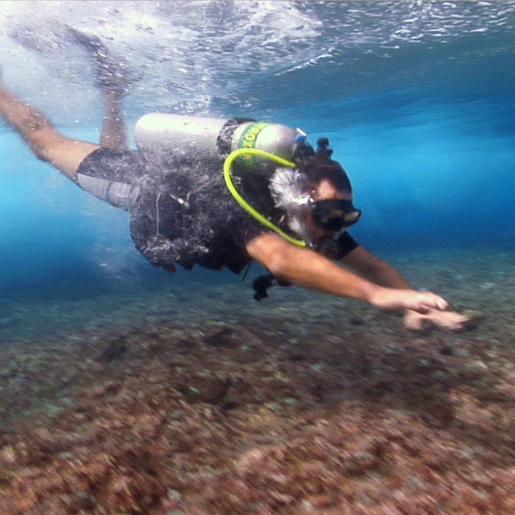 Scuba Diving Under Rolling Waves (video)