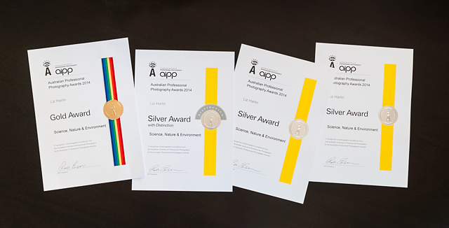 AIPP APPA awards certificates