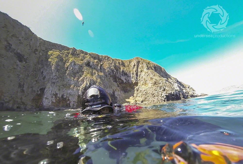 Scuba diving in Anacapa, California