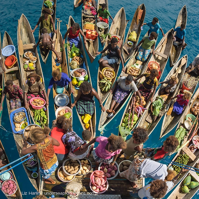 Floating Market In The Solomon Islands