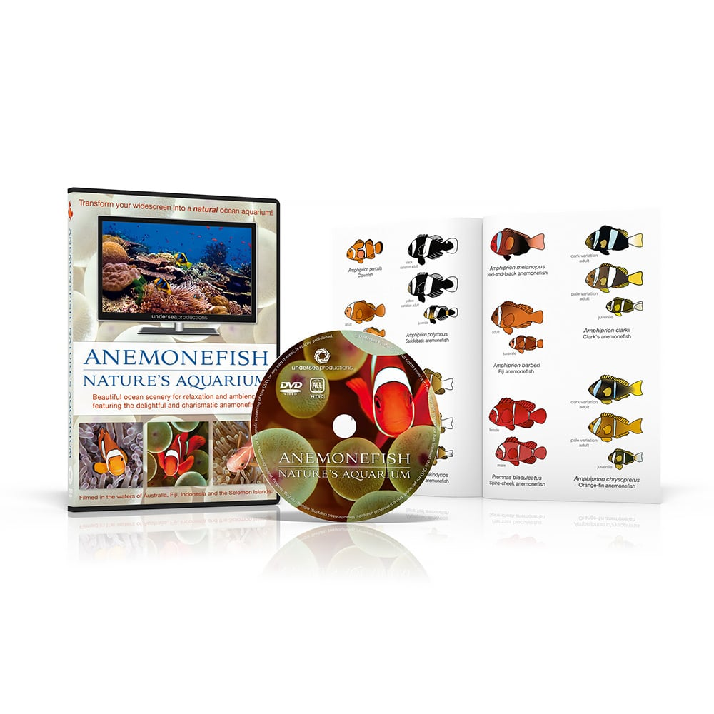 Anemonefish: Nature's Aquarium DVD comes with a reference and ID guide to the different species of clownfish in the video