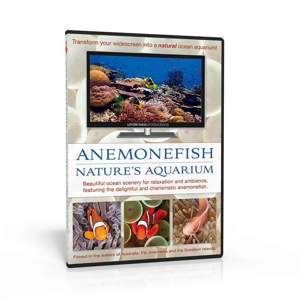 Anemonefish: Nature's Aquarium DVD. Beautiful ocean scenery for relaxation and ambience, featuring the delightful and charismatic clownfish. Transform your widescreen into a natural ocean aquarium.