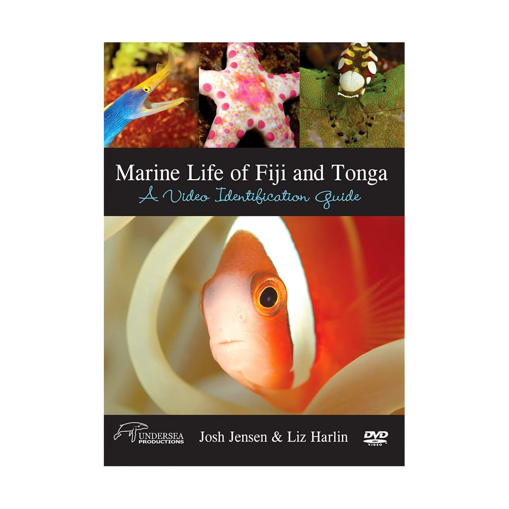 Marine Life Of Fiji & Tonga: A Video Identification Guide
