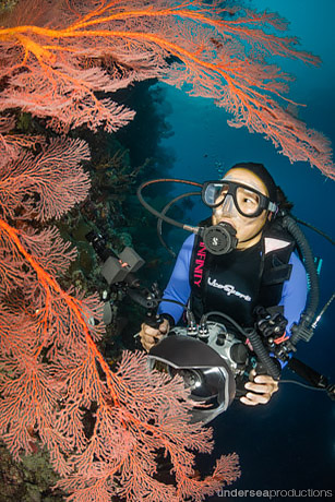 female scuba diver with underwater camera behind a large red sea fan