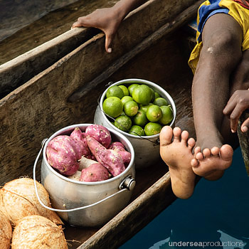 limes, sweet potatoes and coconuts in a dugout canoe, pacific island culture and trade