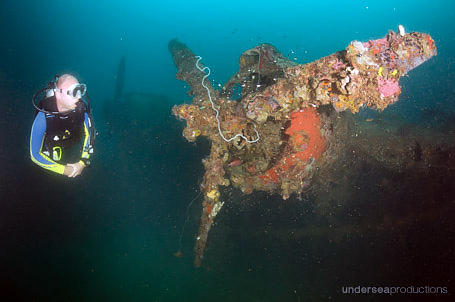 scuba diver observes the propellors on the wreck of a WWII sea plane, in the Solomon Islands